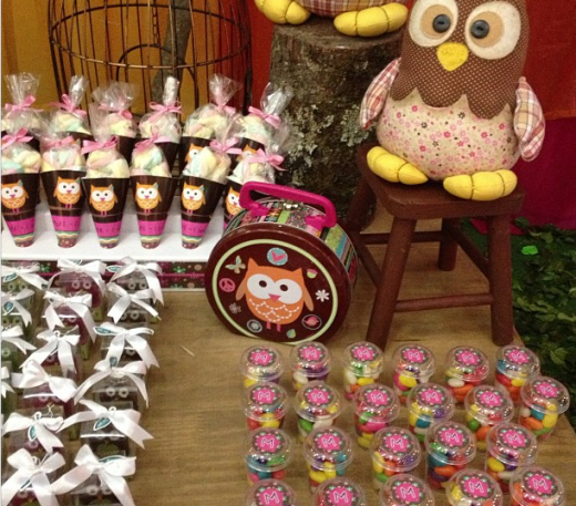Decoração de festa infantil com tema corujinha