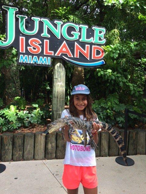 Foto com filhote de jacaré no Jungle Island