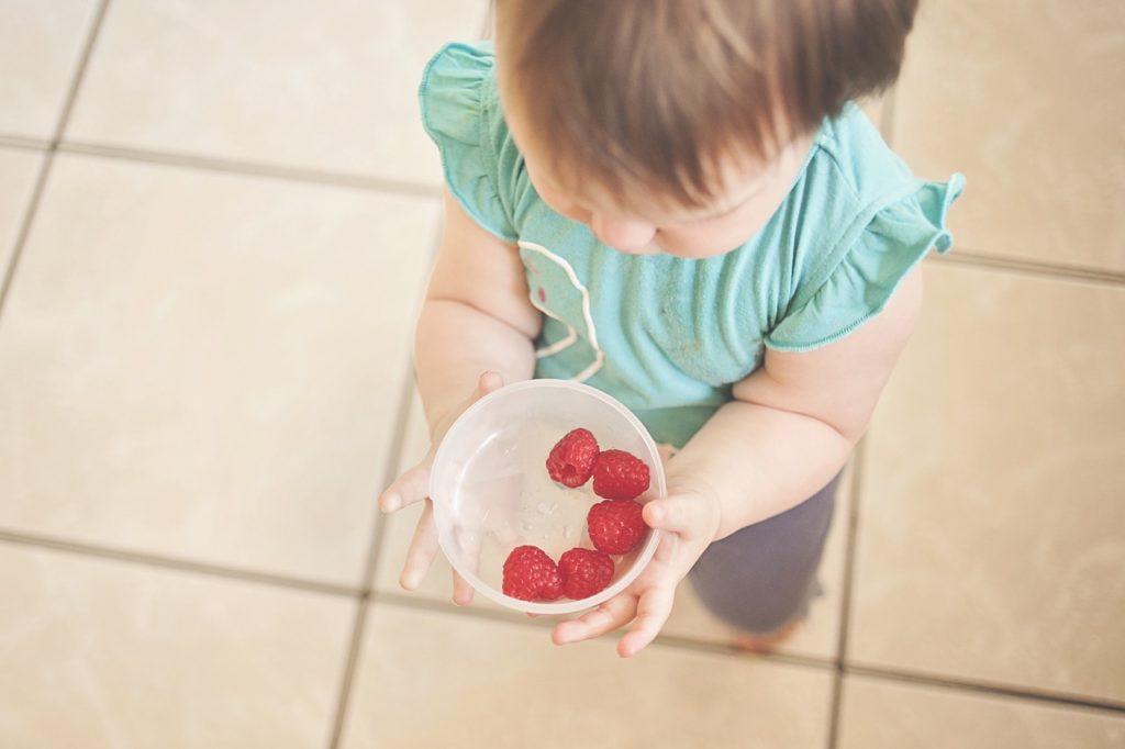 lancheira saudável para seus filhos